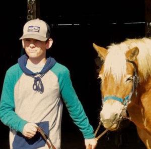 Jaxon_horse