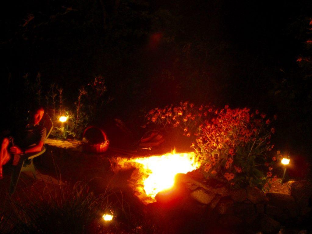 Firepit - 1 (1)