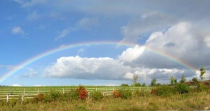 Rainbow photo taken by Karen October, 2014.