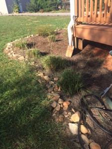 grass_after