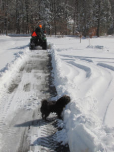 Plowing the driveway with Bella's help!